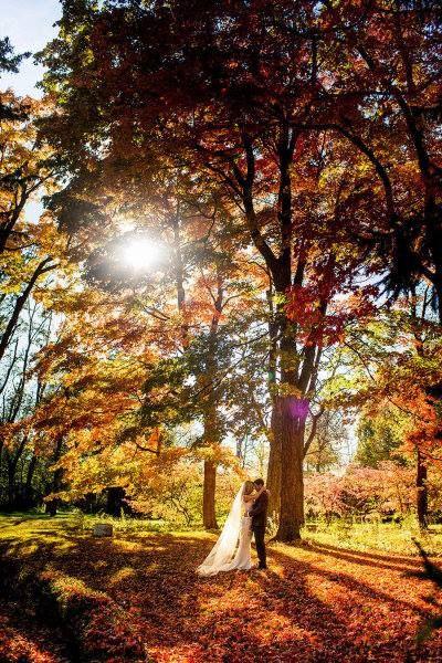 Bruiloft herfst | 17 Sounds